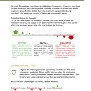 Beyond DNA Auszug aus Analyse Nutrition